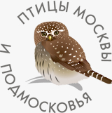 Программа Птицы Москвы и Подмосковья