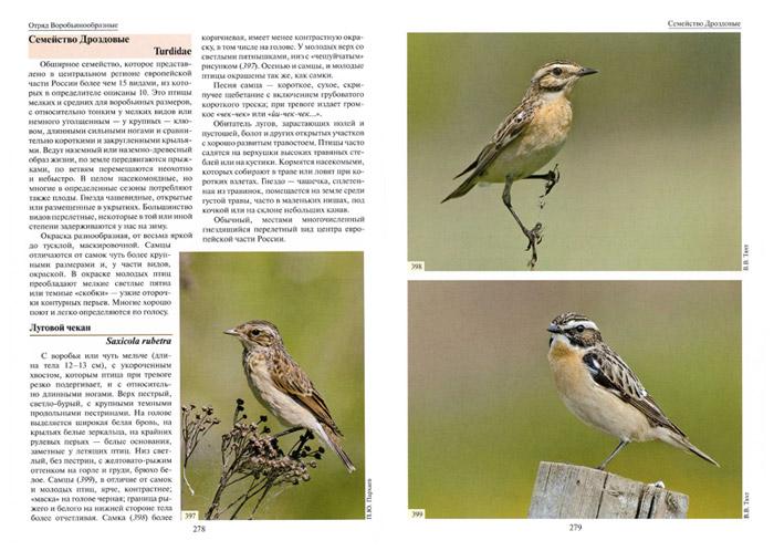 Перед вами - уникальный атлас-определитель птиц европейской части России.